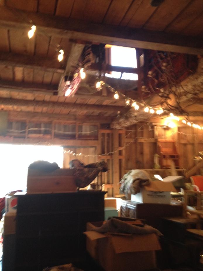Wide Shot of Barn